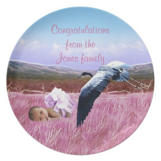 Baby Girl congratulations Party Plate