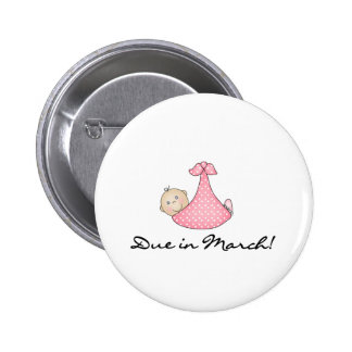 Baby Girl Due in March Pinback Button