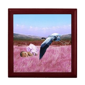 Baby girl in pink keepsake box