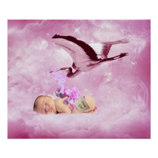 Baby girl pink clouds and stork bedroom poster