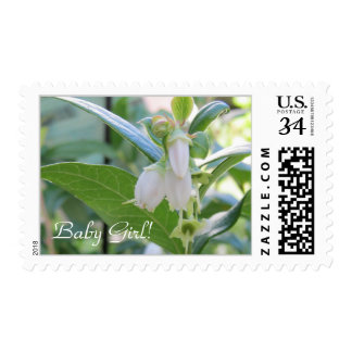 Baby Girl Postcard Stamps 29 cents