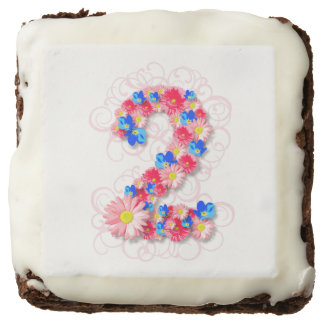 Baby Girls Second 2nd Birthday Pink Flower Two Brownie