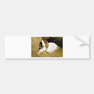 Baby Goat Bumper Sticker