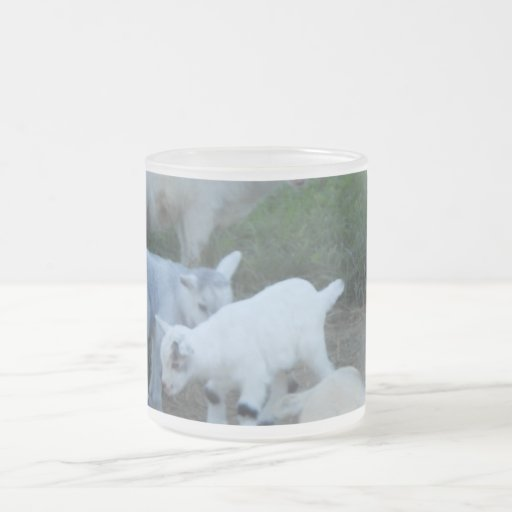 Baby Goat Family 10 Oz Frosted Glass Coffee Mug