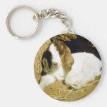 Baby Goat Key Chains