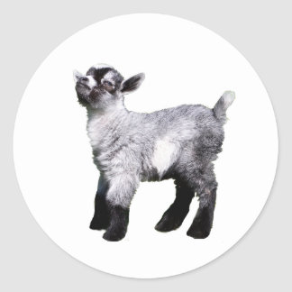 baby goat left side stickers