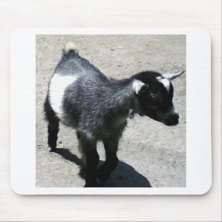 Baby Goat Mouse Pad