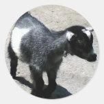 Baby Goat Round Stickers