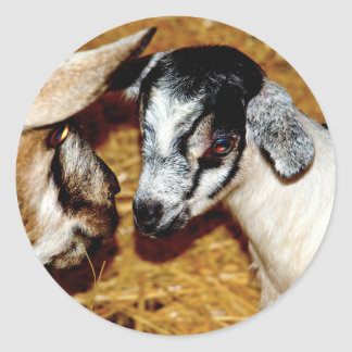 Baby Goat - Sheet of Stickers