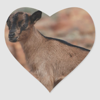 Baby Goat Heart Sticker