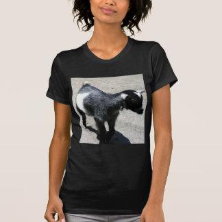Baby Goat Tee Shirt