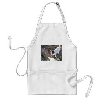 Baby Goat with Cabbage Leaves Aprons