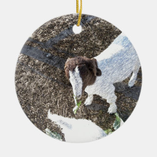 Baby Goat with Cabbage Leaves Ceramic Ornament
