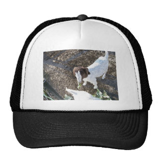 Baby Goat with Cabbage Leaves Trucker Hat