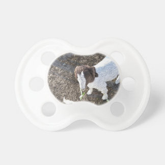 Baby Goat with Cabbage Leaves Pacifier