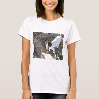 Baby Goat with Cabbage Leaves T-Shirt