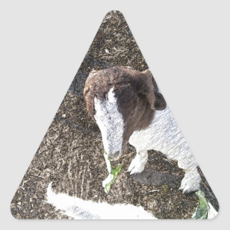 Baby Goat with Cabbage Leaves Triangle Sticker