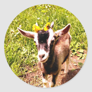 Baby Goat with Flowers - Sheet of Stickers