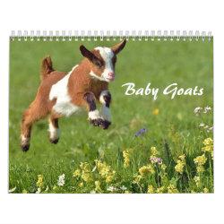 Baby Goats Calendar