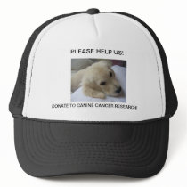 BABY GOLDEN PLEADING FOR HELP! TRUCKER HAT