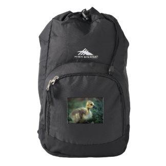 baby goose high sierra backpack