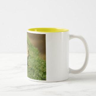 Baby Goose Looking at a Baby Mushroom Coffee Mug