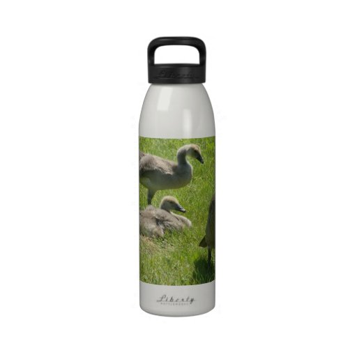 Baby Goose Stretch Liberty Bottle Water Bottles