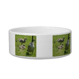Baby Goose Stretch Pet Bowl