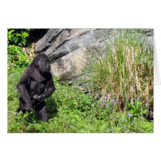 Baby Gorilla Birthday Card