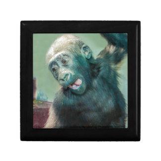 Baby Gorilla Jewelry Box