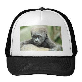BABY GORILLA RELAXING TRUCKER HAT