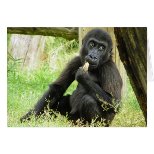 Baby Gorilla Snacking Card