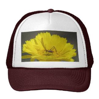 Baby Grasshopper Trucker Hat