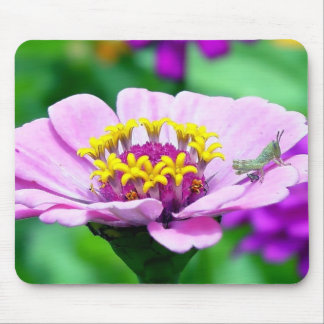 Baby Grasshopper on  Pink Zinnia Mouse Pad