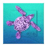 Baby Green Sea Turtle in Violet Gallery Wrap Canvas