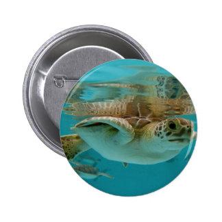Baby Green Sea Turtle Pinback Button