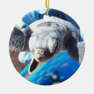 Baby Green Turtle Ceramic Ornament