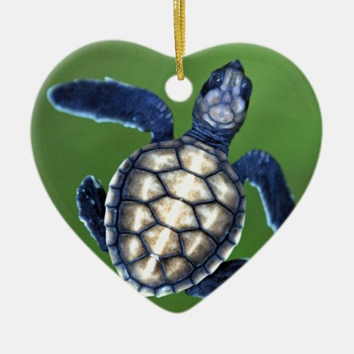 Baby green turtle christmas tree ornaments