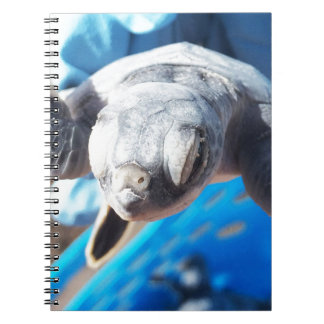 Baby Green Turtle Spiral Notebook