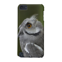 Baby Grey Owl iPod Touch Case