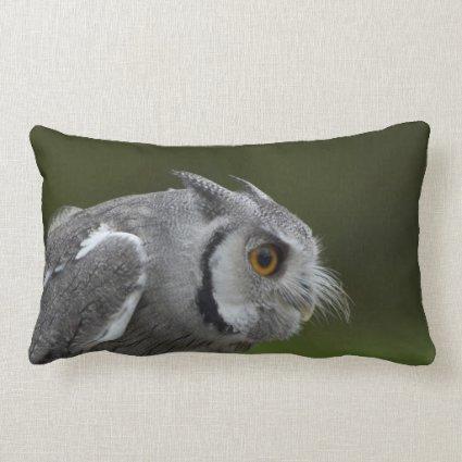Baby Grey Owl Pillows