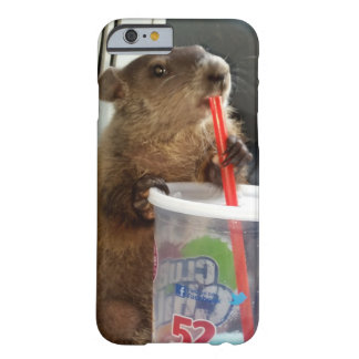 Baby Groundhog Moses iPhone 6 Case