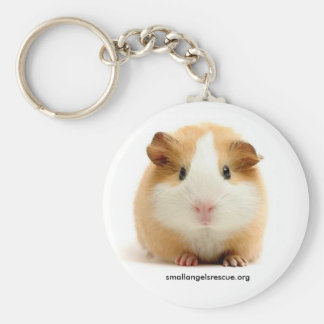 Baby Guinea Pig keychain