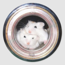Baby hamster: Piled up! Classic Round Sticker