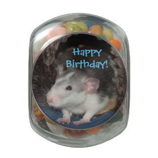 baby Happy Birthday Dumbo rat candy tin