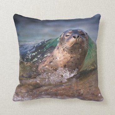 Beach Themed Baby Harbor Seal Throw Pillow