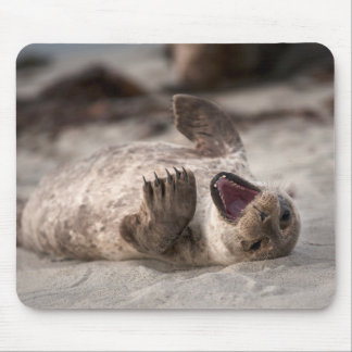 Baby Harbor Seal Yawning Mouse Pad