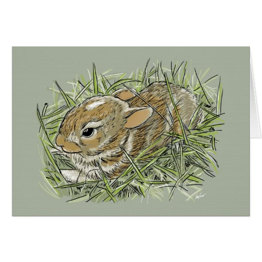 Baby Hare Card