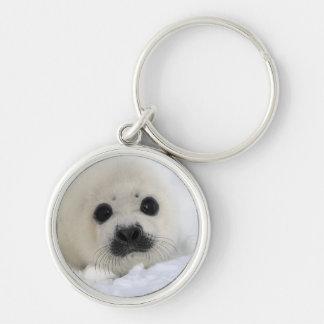 Baby Harp Seal Keychain