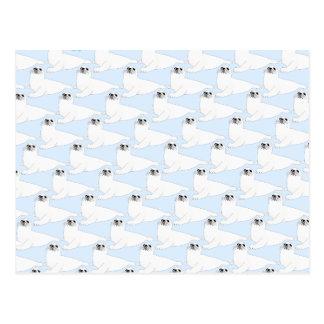 Baby Harp Seal Pattern on blue Postcard